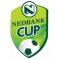 Кубок Южной Африки